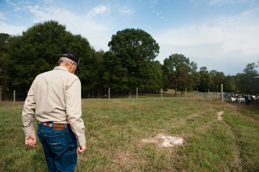 Jackie Bean walks the path to a larger pasture, away from his barn, at D and J Goat Farms on Friday, October 16, 2015 near Robbins, North Carolina. Jackie Bean and his son Derek Bean have been raising livestock for years, specializing in goats for almost a decade. The farms produce commercial stock, breeding stock and show stock Boer goats.
