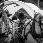 2016 Annual Farmer's Day